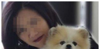 muere primer perro diagnosticado con coronavirus