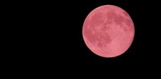 Superluna Rosada en Abril - Noticiero de Venezuela