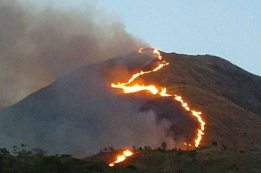 Incendios forestales en Caracas - NDV