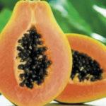 La Lechoza fruta beneficiosa-NoticierodeVenezuela