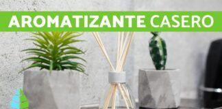 Ambientador natural en casa - Noticiero de Venezuela
