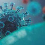 Mutación del coronavirus es lenta - Noticiero de Venezuela