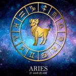 Aries - NVD