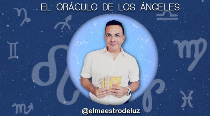 El Maestro de Luz - NDV
