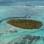vertido de fuel en isla de Mauricio - NDV