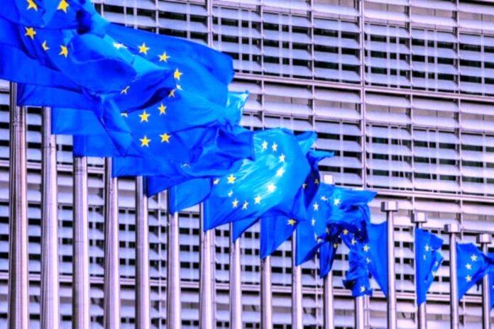 UE viajó a Caracas para promover condiciones mínimas - NDV