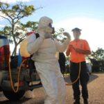 Venezuela cerró semana con de mil casos - NDV