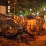 Tumban estatuas en protestas en Oregon - ndv