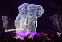 circo utiliza hologramas de animales - ndv