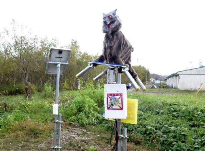 lobos robots - NDV