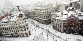 nevada en madrid