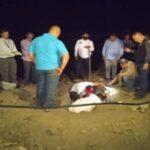 Hallaron enterrada en Portuguesa a mujer