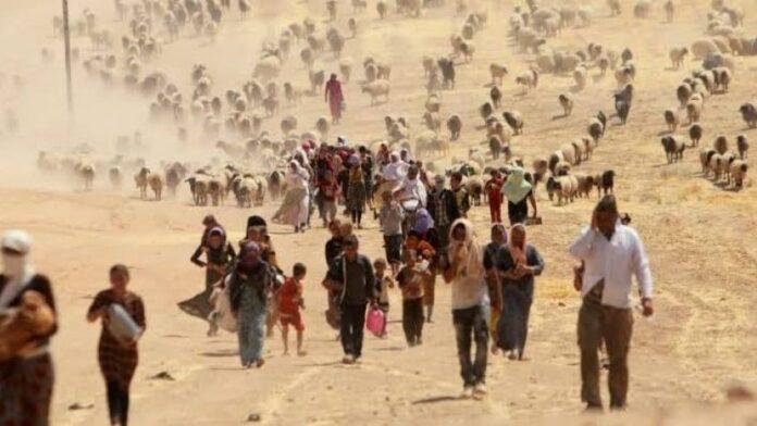 grandes migraciones en 2050 por cambio climático