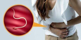 los parásitos intestinales