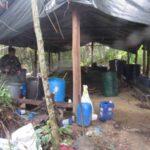 Incautan 13.883 kilos de cocaína en el Zulia